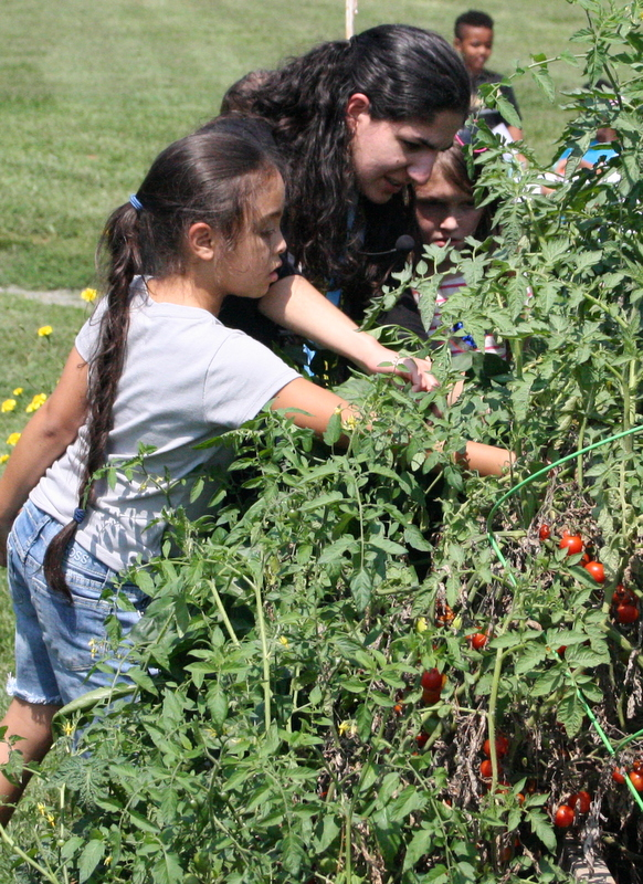 Students attending to garden at New Danville