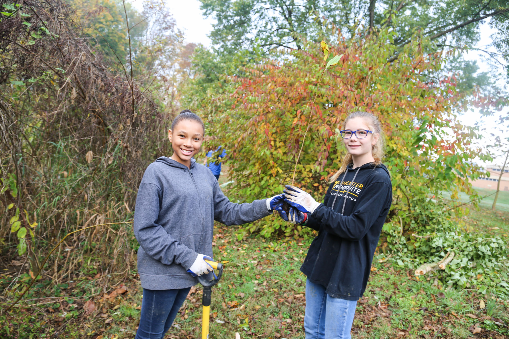student planting trees on mill stream