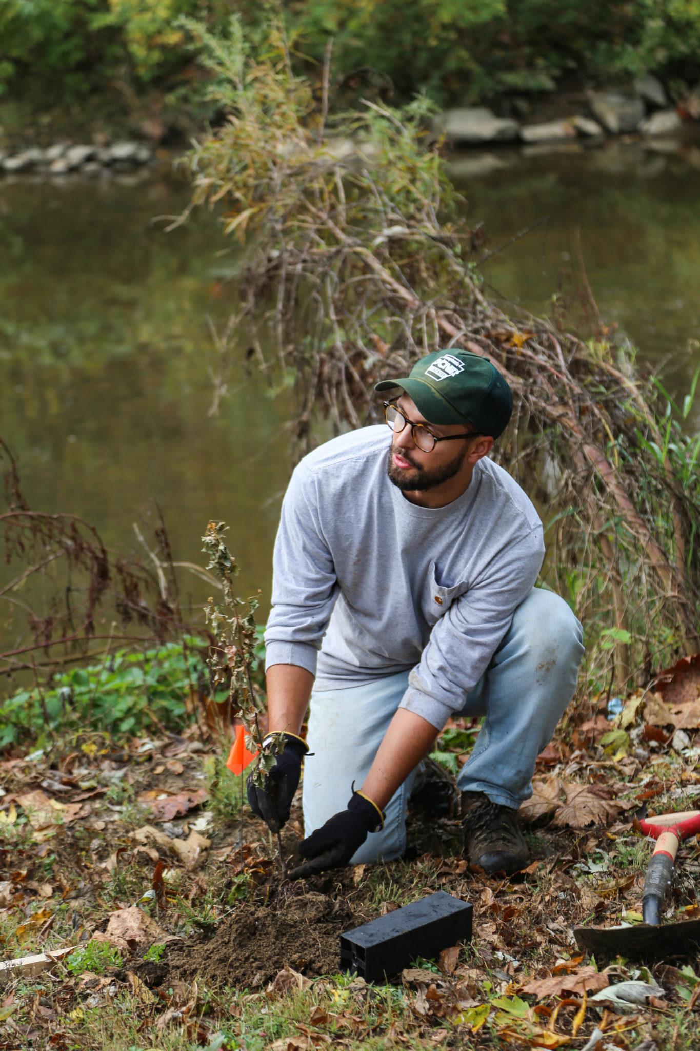 teacher planting tree