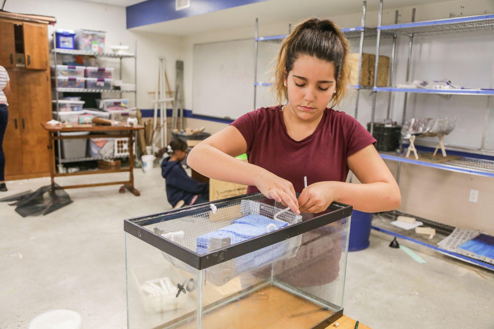 student working on fish tank