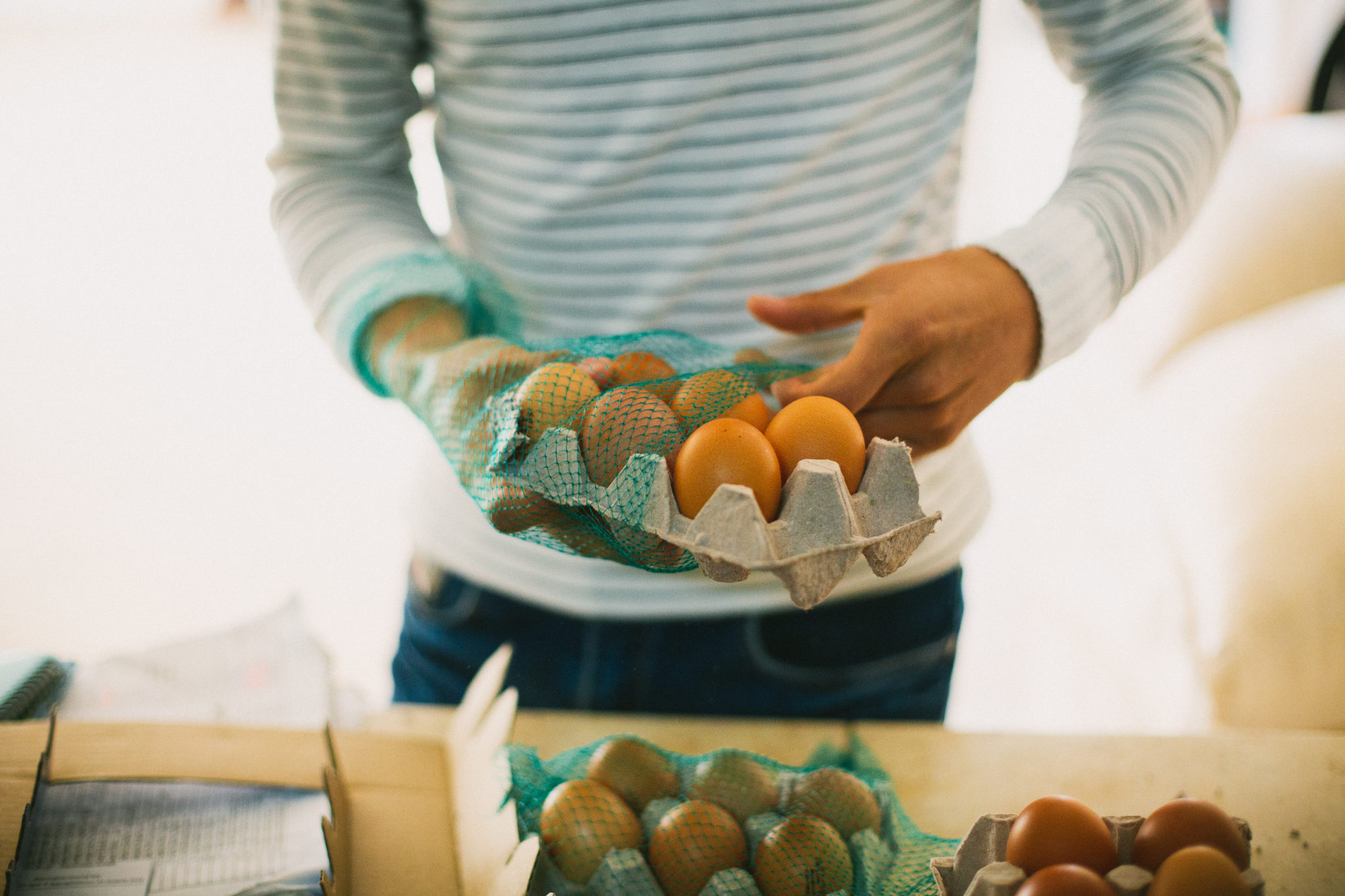 photo of someone holding brown eggs in carton