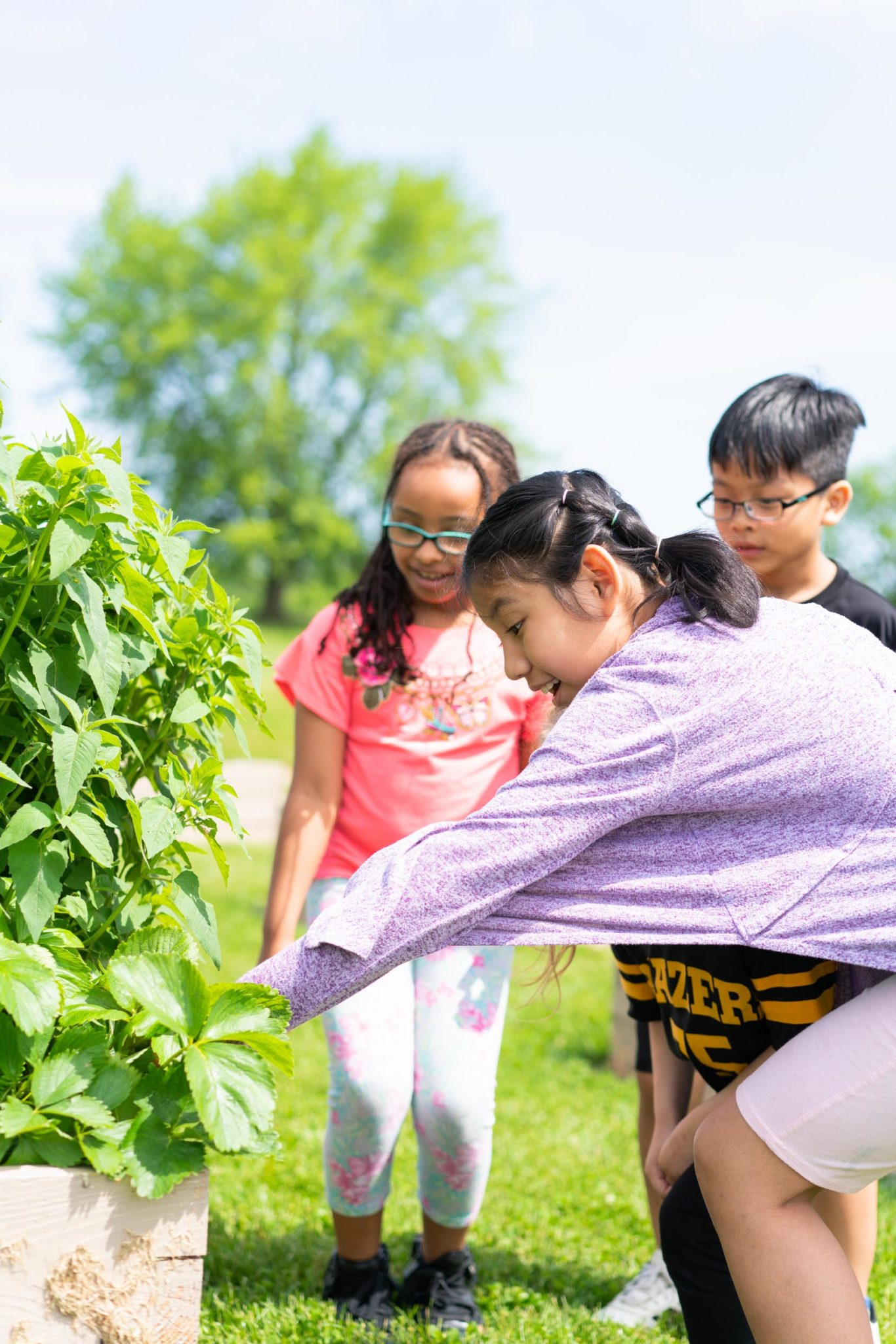 students attending to a garden
