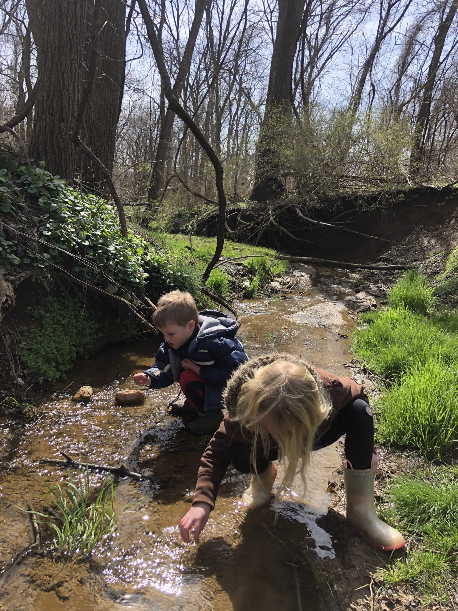 students in a creek